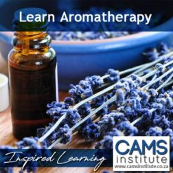 Aromatherapy Course - Certificate