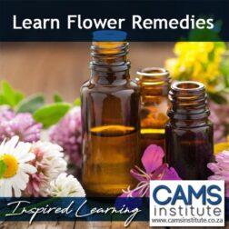 Flower Remedies Course